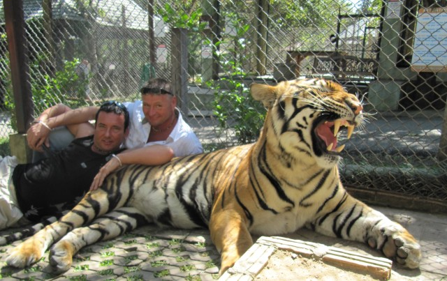 Položit se do tygří klece k tygrovi je pro J&L hračka. V běžném životě prokázali tolik odvahy, že na ně žádný akční hrdina nemá.